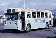 trolleybus(0.0), flxible new look bus(0.0), vehicle(1.0), transport(1.0), mode of transport(1.0), public transport(1.0), minibus(1.0), tour bus service(1.0), land vehicle(1.0), bus(1.0),