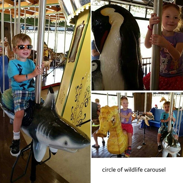 The new Circle of wildlife carousel at the Cleveland Metroparks Zoo is about the coolest thing ever. He got to ride a shark!!! @clevemetroparks #thisiscle #zoo #stevensonpartyoffive