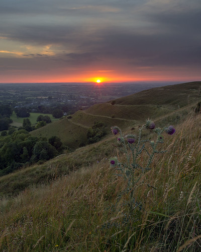 Hambledon Hill Sunset
