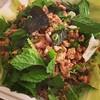 Delicious larb / laab salad from Pad Thai Kitchen on SE Belmont || #pdxpipeline #pdxeats #pdxfood #portland #portlandia #portlandfood #sepdx #dinepdx #biteoforegon #padthaikitchen