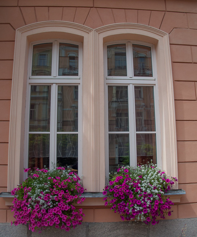 Karlovy Vary Window, Czech