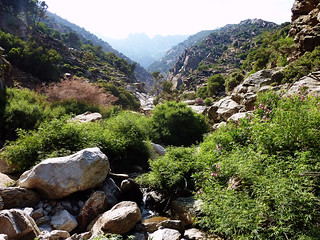 EGRf044 (general view of the canyon)