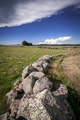 Muret en granit sur l'Aubrac - A wall of granite in Aubrac region