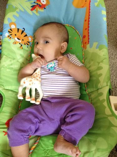 Miranda- 3 Months 2014