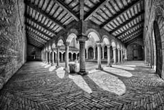 Chiostro Museo della Cattedrale, Ferrara di Andrea Parisi [2013, 8° classificato]