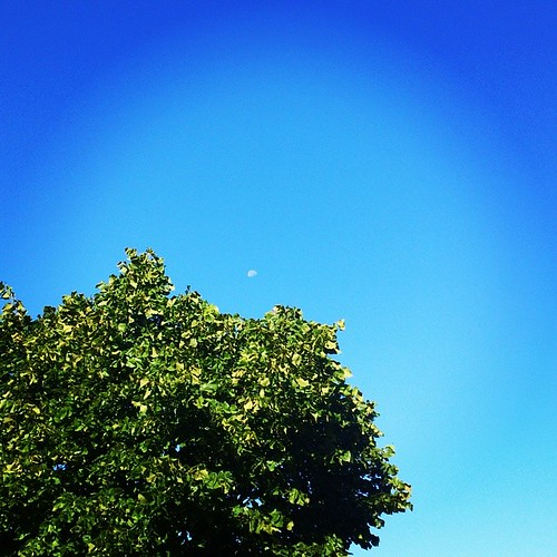 square lofi squareformat iphoneography instagramapp uploaded:by=instagram foursquare:venue=4e0f37b5ae603a50b54a4961