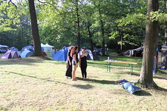 outdoor recreation, picnic, camping, park,
