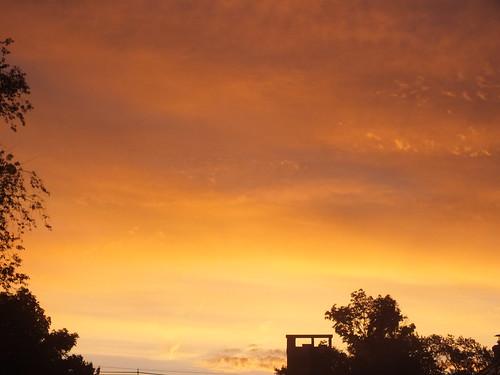 morning sunrise light
