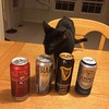 Panther chooses the Harp Premium Lager.