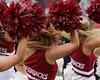 University of Arkansas Football vs Nichols State University