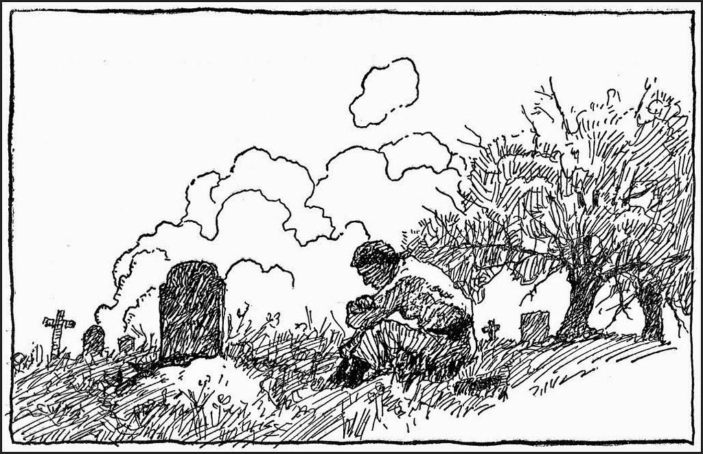 Wyeth_NC113