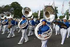 carnival(0.0), tuba(0.0), sousaphone(1.0), marching band(1.0), musician(1.0), musical ensemble(1.0), marching(1.0), brass instrument(1.0), person(1.0),