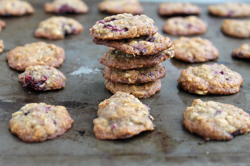 Blackberry Coconut Oatmeal Cookies | http://www.katesshortandsweets.com