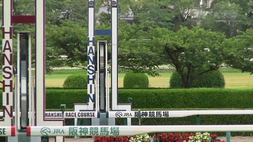 20140622_阪神競馬場