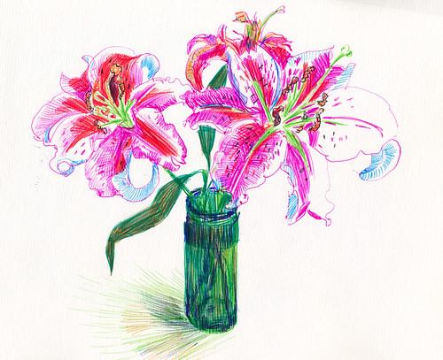 May 2014: Lilies