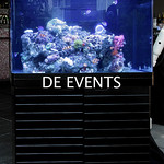 Concept & Special Events