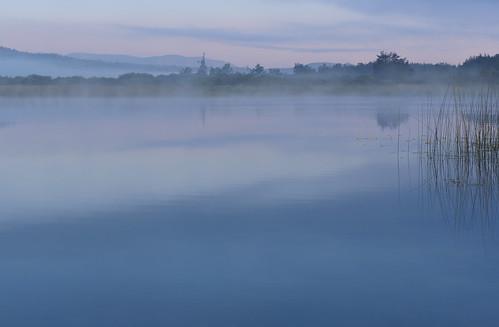 morning fog landscape geotagged dawn spring slovenia slovenija yellowpondlily yellowwaterlily nupharluteum jutro megla pomlad cerknicalake cerkniškojezero rumeniblatnik