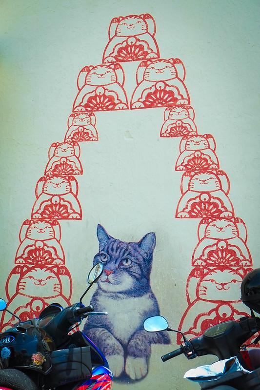 Penang Cat