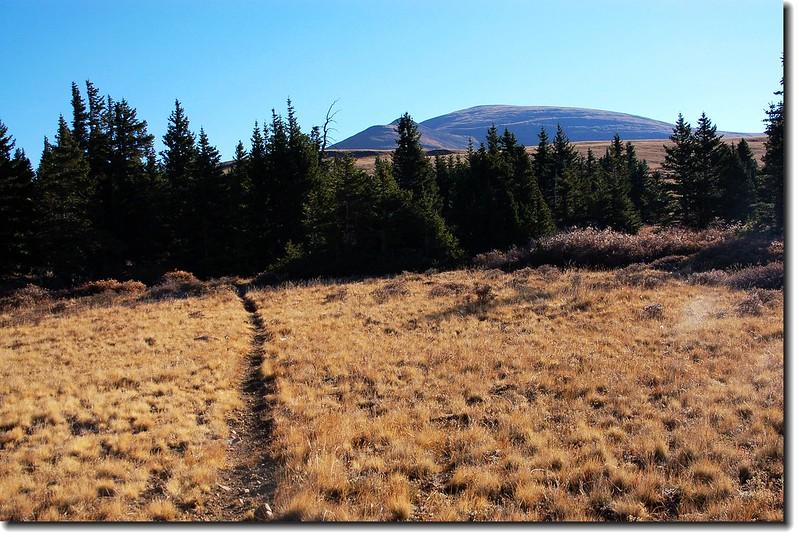 Near the Beaver ridge top