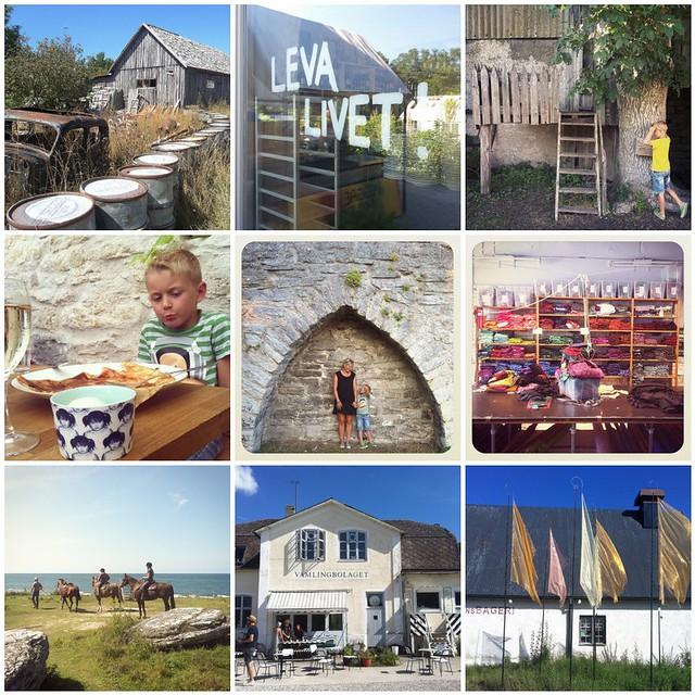 Gotland 6