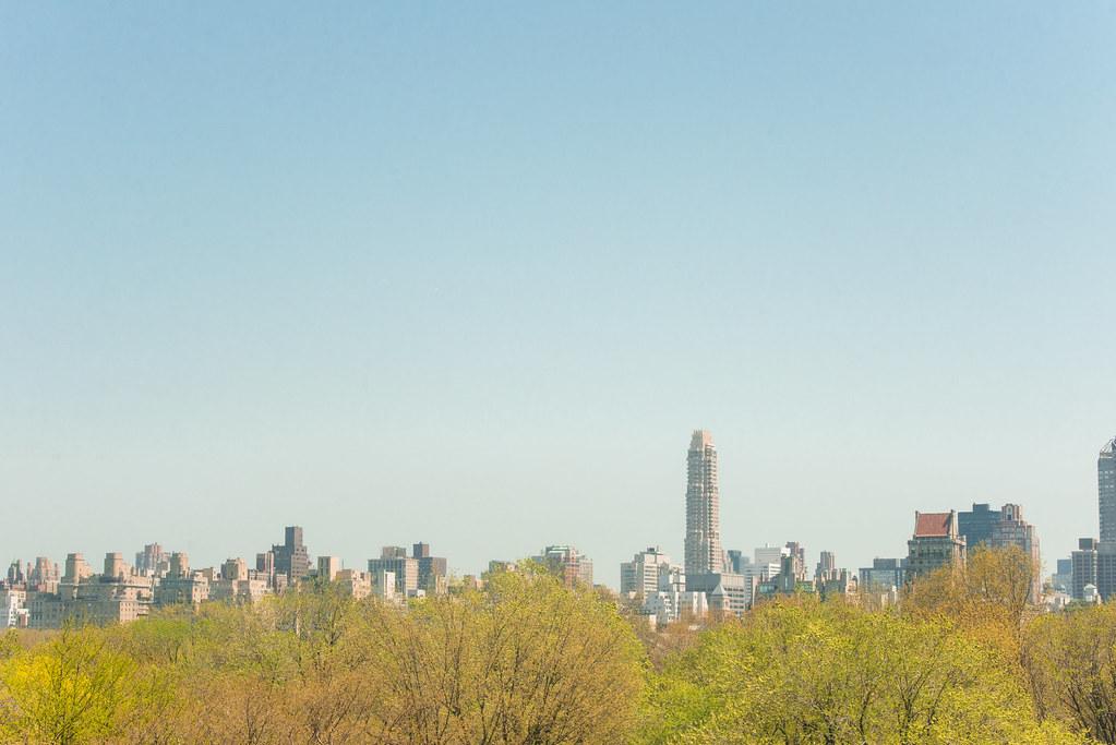 Skyline and park