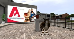 Ice Bucket Challenge in Second Life 2014