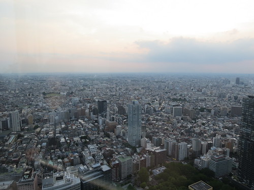 View from the Tokyo Metropolitan Government Building