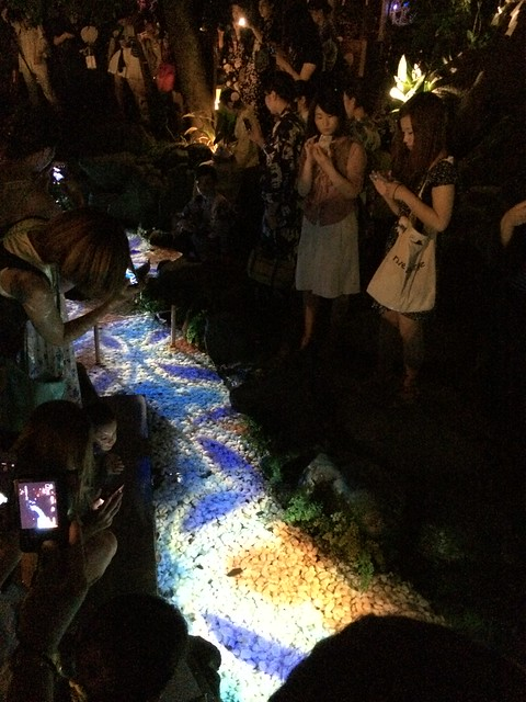 iPhone5sで撮影 川越氷川神社七夕祭 2014年8月7日