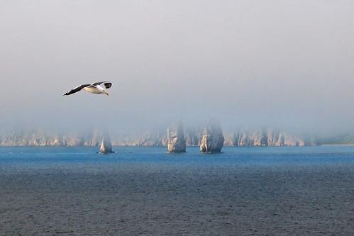 アバチャ湾 Avacha Bay