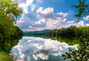 Radnor Lake State Natural Area - Aug 28, 2014