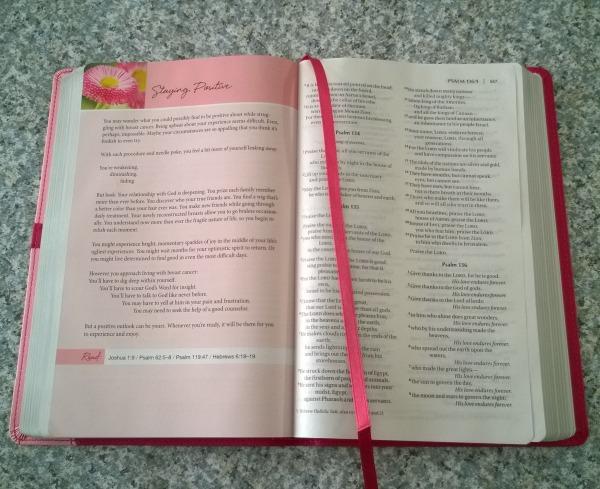 NIV Pink Bible 2