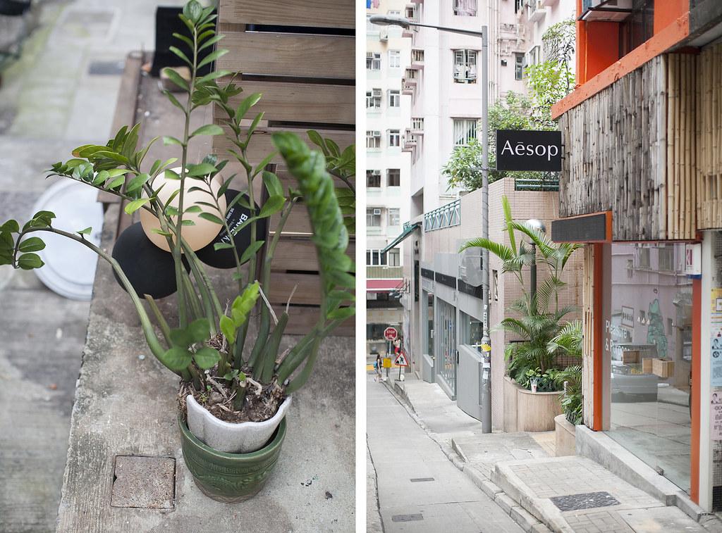 hong kong sheung wan aesop