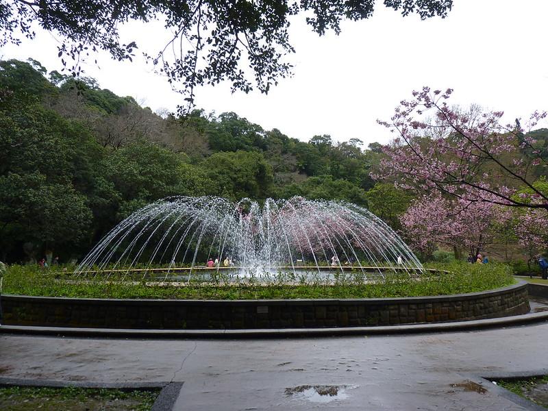 20140216陽峰古道、陽明公園、大屯瀑布 (3)