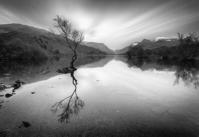 A Grey Day at Llyn Padarn
