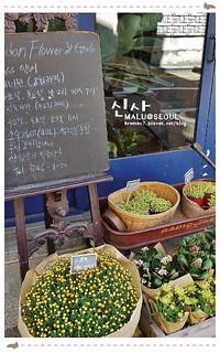 韓國首爾自由行-556(新沙洞散策)