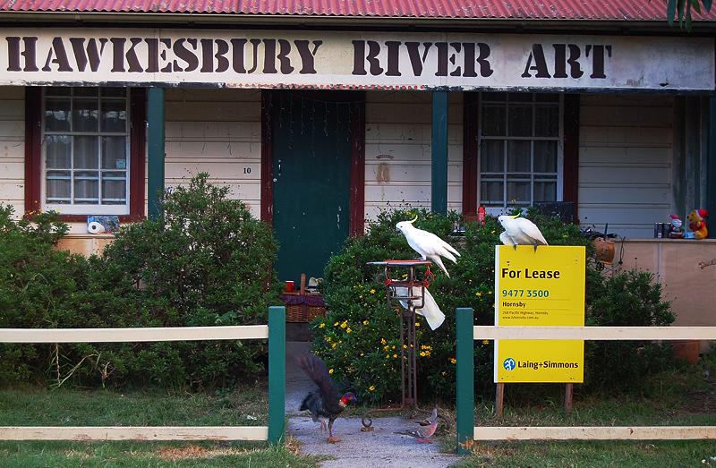 _Hawksbury river art_