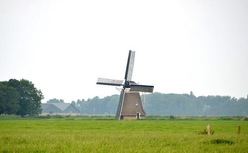 Friesland juli 2014 (101) Holwerd (Holwert), Miedenmolen