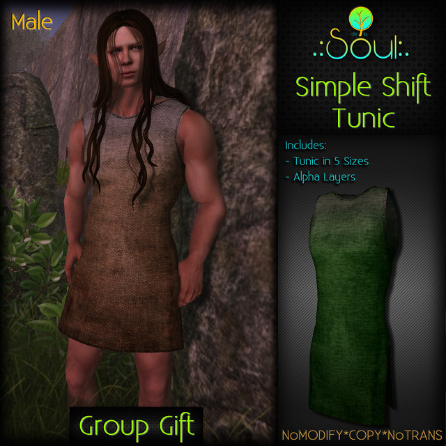 2014 Simple Shift Tunic GroupGift Male