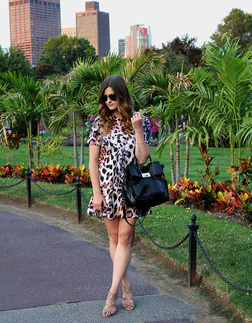 Easy-Leopard-Dress-2