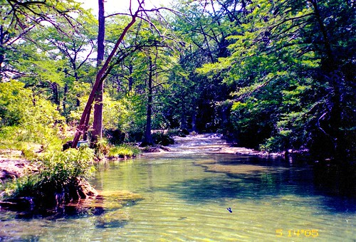 trees green nature water landscape texas waterfalls waterscape cypresscreek wimberleytexas