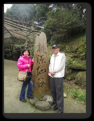 桃園復興鄉-拉拉山-桃源仙谷-鬱金香 (1)