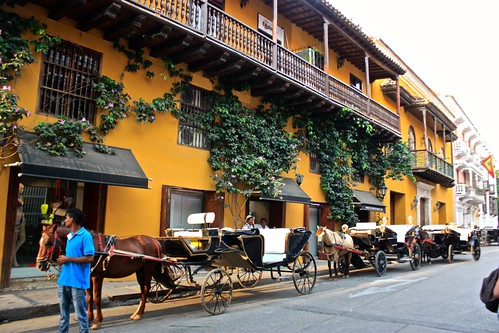 Another horse lineup in Cartagena