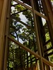 Mirror Mirror, glass plate walls, reflecting trees and man made halls.