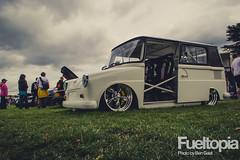 VW Fridolin W12 engine