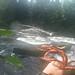Lining Webster Stream