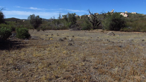 california forest sandiego august cuyamaca 2014 cnf clevelandnational hulburdgrove sheriltonvalley