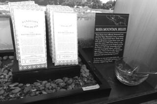 Dandelion Chocolates - Chocolate Tasting Belize