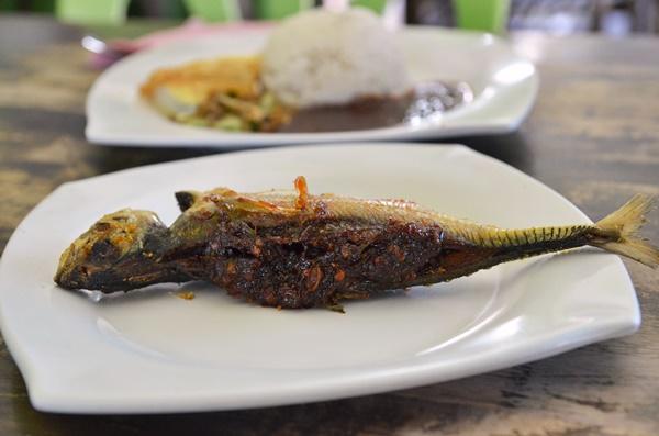 Ikan Caru Sumbat