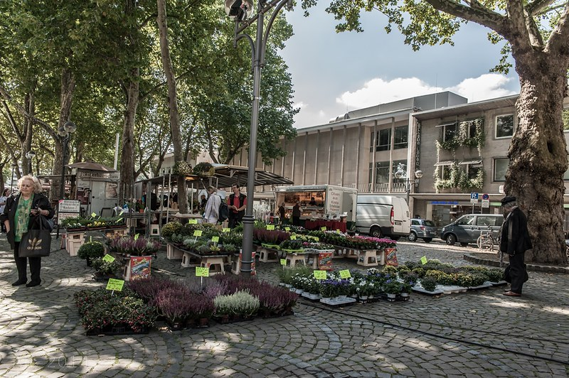 Cologne Weekly Market_St. Aposteln 3