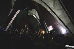 PIKNIC ÉLECTRONIK 2014 - 21 septembre ©Elise Apap